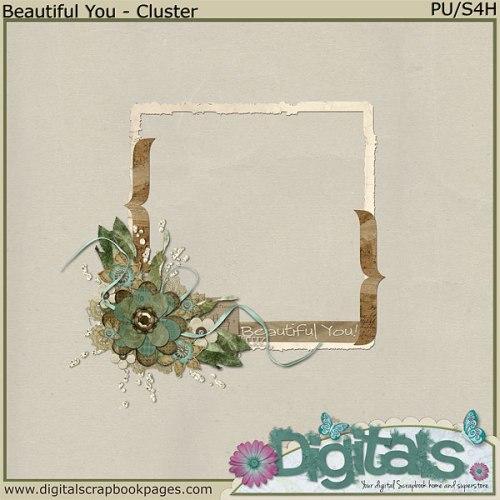 rittc_beautifulyou-cluster1